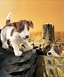 Jack Russell Dog - Folkmanis // #Best Australian Puppet Store™
