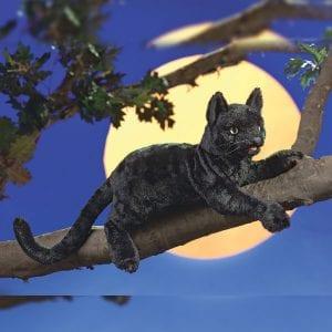Folkmanis™ Black Cat Hand Puppet - Australian Puppet // Shop Now
